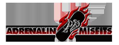 скачать Adrenalin Misfits (PAL, NTSC-J, ENG, Kinect) для Xbox 360